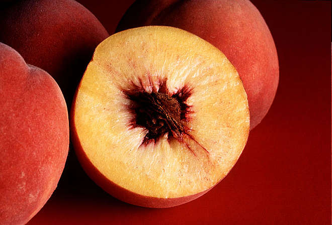 Autumn Red peaches From Wikipedia, the free encyclopedia